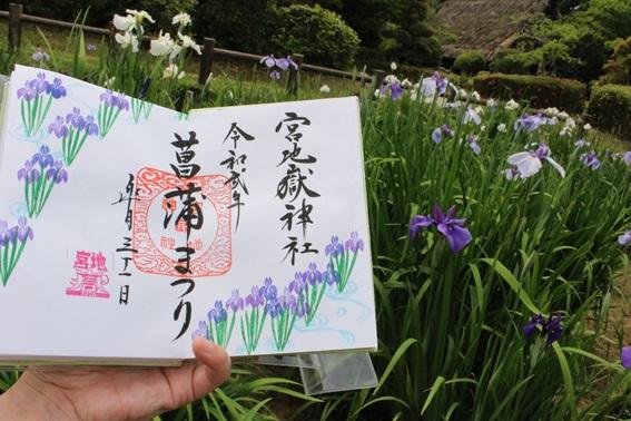 菖蒲初狩り神事4